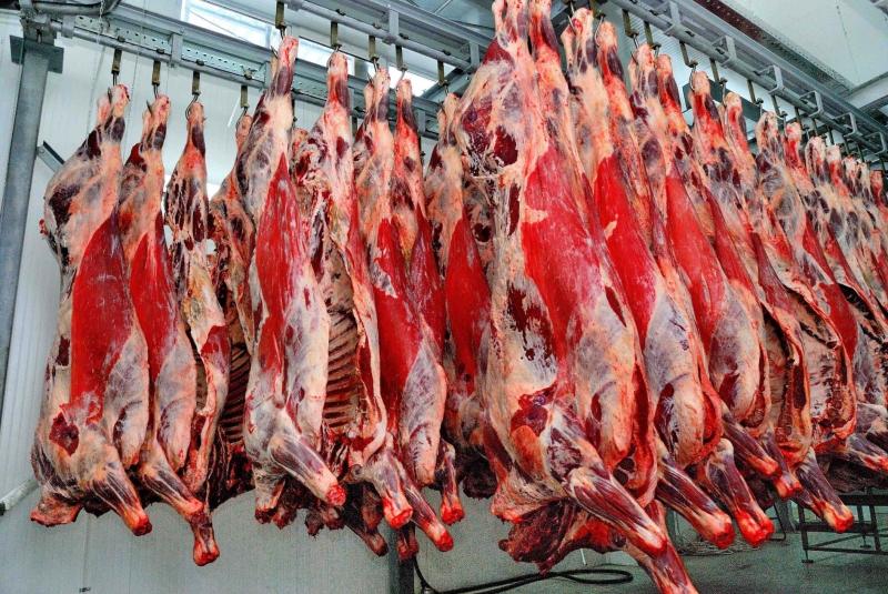 мясо в ассортементе  мелкий опт от 100 кг доставка