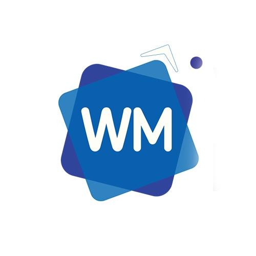 WebMaster  Создание и продвижение сайтов